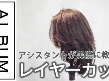 【基礎】カット_レイヤー