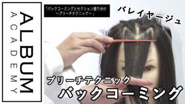 【ALBUMパーフェクトガイド】バックコーミングとセクション塗り分け〜ブリーチテクニック〜(桑原)