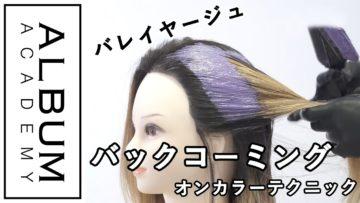 【ALBUMパーフェクトガイド】バックコーミングとセクション塗り分け〜オンカラーテクニック〜(桑原)